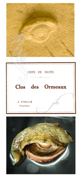 clos_des_ormeaux