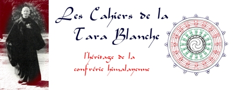 banniere_tara