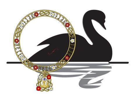 cygne-noir2
