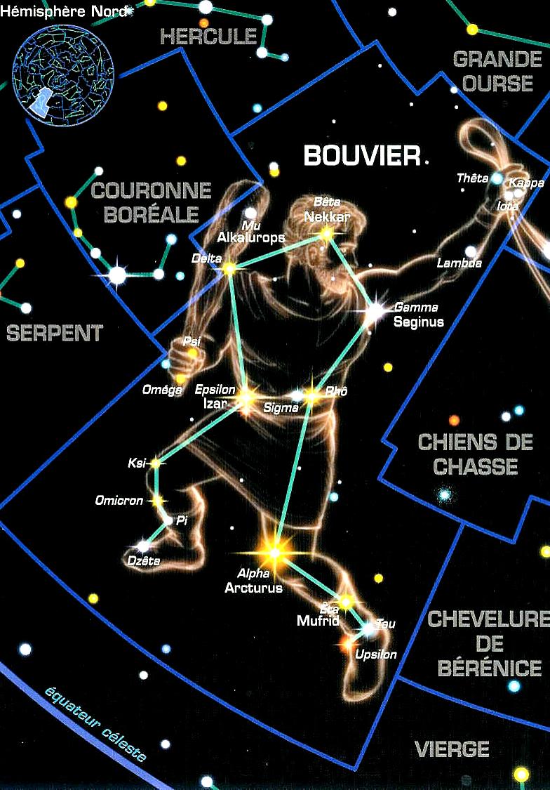 bouvier-1