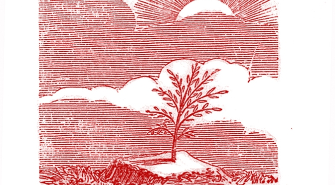 L'acacia m'est connu : Hiram maâkherou