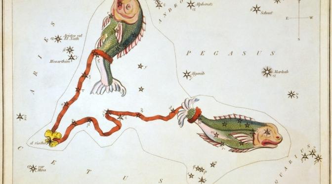 Echeneis ou de la Remora, le rebis philosophal