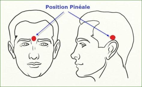 position pinéale